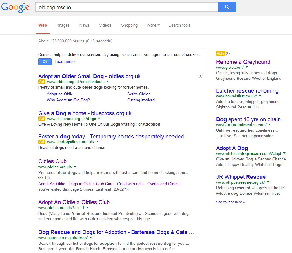 AdWords Case Study