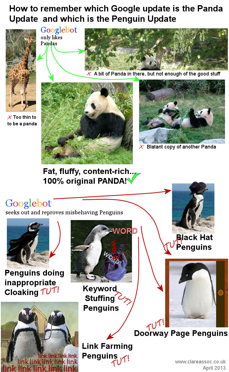 Panda or Penguin Google Update: Telling the Difference infographic